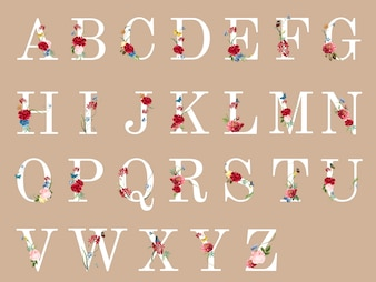 Botanical alphabet with tropical flowers illustration