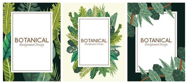 Botanical background set