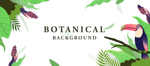 Botanical background with toucan bird