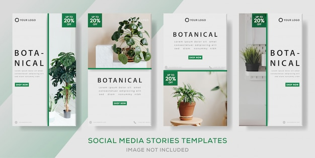 Botanical banner template for media social stories post. preimum vector