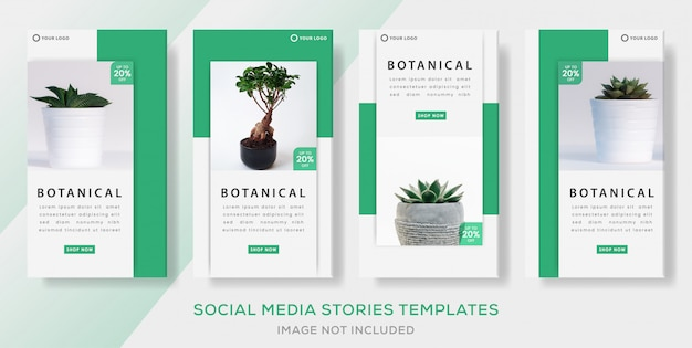 Botanical banner template with green color for media social stories template. premium