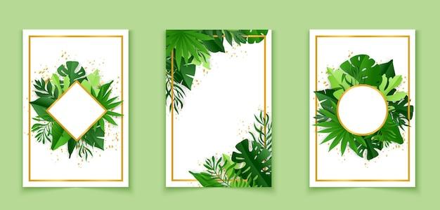 열대 잎으로 장식된 식물 배너입니다. 디자인 일러스트레이션