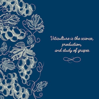 Botanical berry sketch blue template with text and bunches of ripe grapes in vintage style