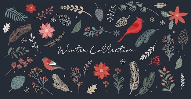 Botanical christmas, xmas elements, winter flowers, leaves, birds and pinecones isolated on whites.