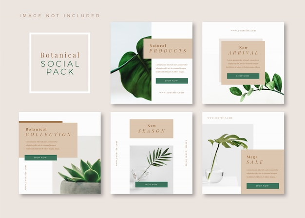 Botanical clean simple square social media template for instagram, facebook, carousel