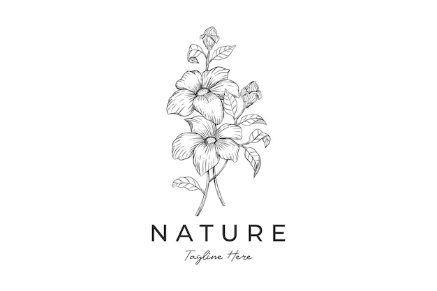 Ботанический рисованной винтажный шаблон логотипа