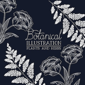 Botanical illustration label with plants and herbs