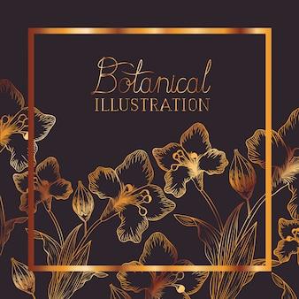Botanical illustration label with plants