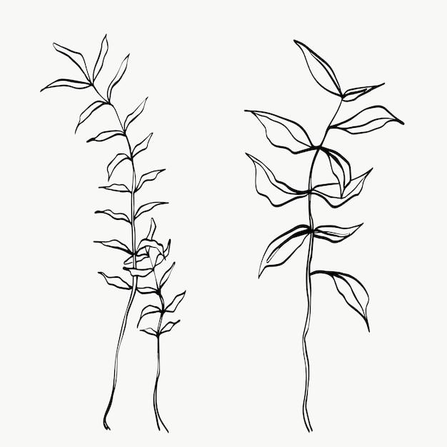 植物の葉の線画。抽象的な現代または最小限の植物のライン。ポスターなどの室内装飾に最適です。ベクトルイラストデザイン。