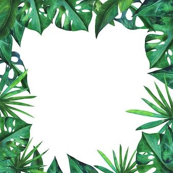 植物モンステラの葉の長方形のフレームの境界線。