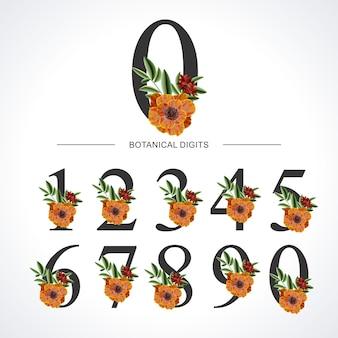 Botanical numbers 0-9