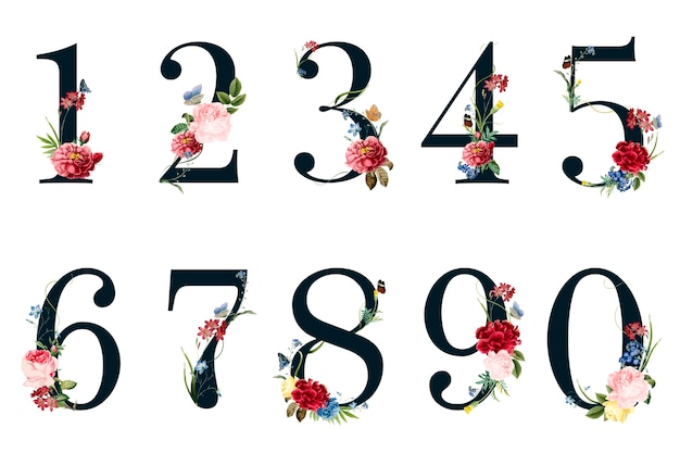 Botanical numbers with tropical flowers illustration