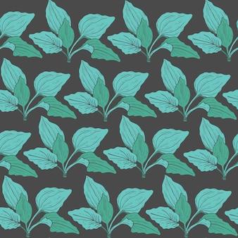 緑のオオバコの葉を持つ植物のシームレスなパターン。ビンテージスタイルで描かれた薬草植物の手。