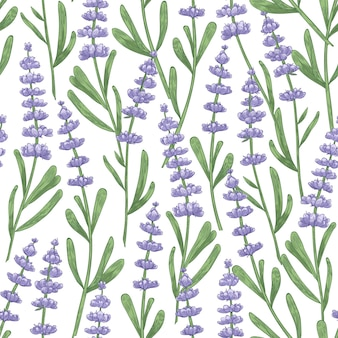 白に手描きのラベンダーの花と植物のシームレスなパターン