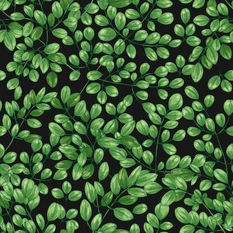 Botanical seamless pattern with miracle tree or moringa oleifera leaves