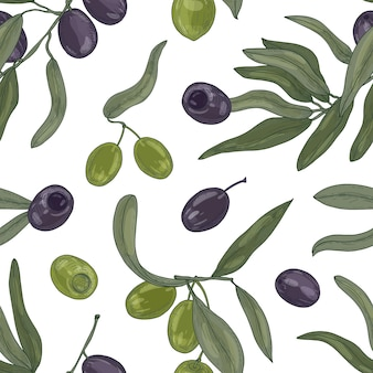 Botanical seamless pattern with organic olive tree branches, leaves, black and green ripe fruits or drupes on white background.
