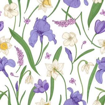 Botanical seamless pattern with seasonal blooming flowers on white background.