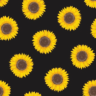 Botanical seamless pattern with sunflower heads. natural backdrop with blooming flower or cultivated crop hand drawn on black background.
