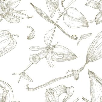 흰색 배경에 등고선으로 그린 바닐라, 잎, 꽃, 과일 또는 꼬투리 손으로 식물의 매끄러운 패턴입니다. 패브릭 인쇄, 벽지에 대한 골동품 스타일의 자연 벡터 일러스트.