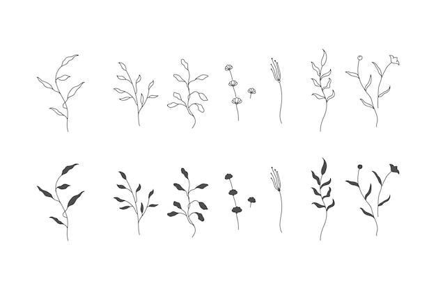 꽃과 나뭇 가지의 식물 세트. 식물의 수집.