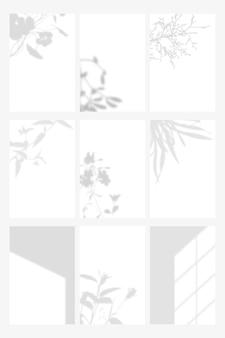 Ombra botanica su set di modelli di sfondo bianco