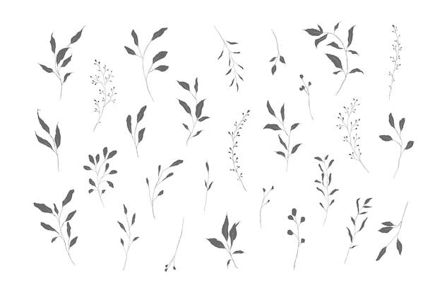 나뭇잎과 나뭇 가지의 식물 실루엣