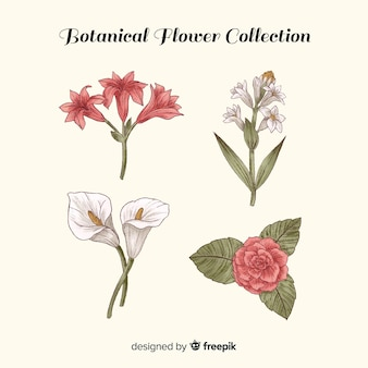 Botanical vintage flowers set