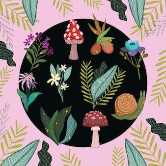 식물성 야생 단풍