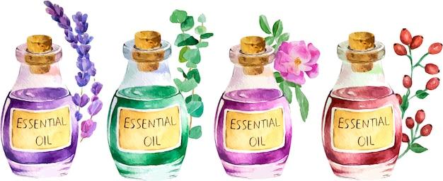 ラベンダーのエッセンシャルオイルとラベンダーの枝のボトル。手描きの水彩イラスト