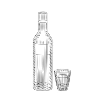 Bottle of vodka and full shot drink. hand drawn alcohol glass bottle sketch isolated