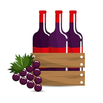 Bottles wine and grape icon