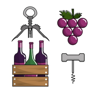 Bottles of wine, grape and take out cork