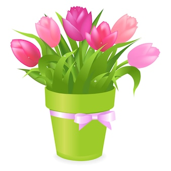 Bouquet of multicolored tulips in green pot,  on white background,  illustration