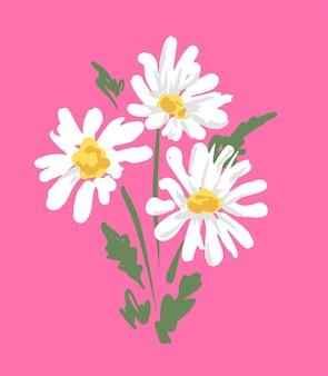 핑크에 아름 다운 데이지의 꽃다발