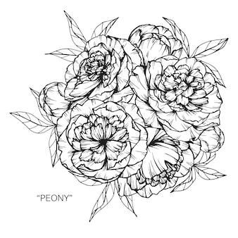 Букет из рисунков рисования цветов пиона