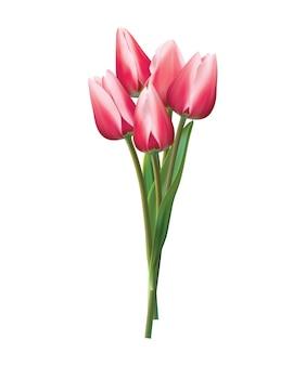 白地に赤いチューリップの花束。リアルなイラスト