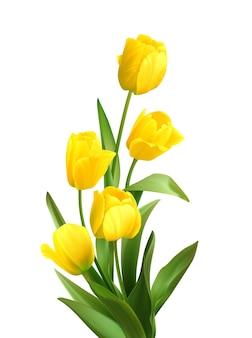 白地に春の黄色いチューリップの花束。