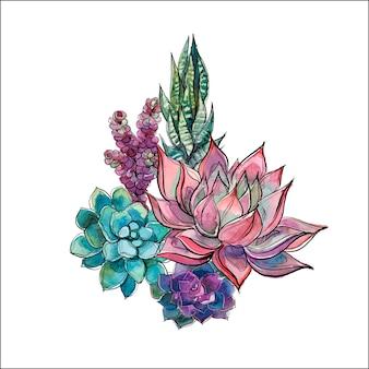 다육 식물의 꽃다발