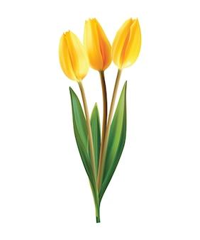 白地に黄色いチューリップの花束。リアルなイラスト