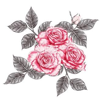 白い背景の上の花束ピンクのバラの花ヴィンテージ