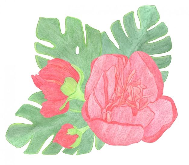 꽃다발 빨간 장미, 격리 된 흰색 배경, 수채화 그림에 아름다운 꽃