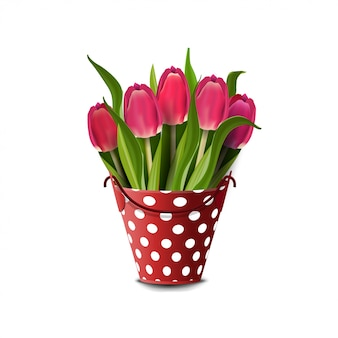 Bouquet of tulips in a bucket isolated on white