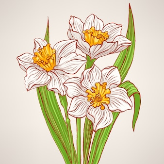 Bouquet with spring narcissus