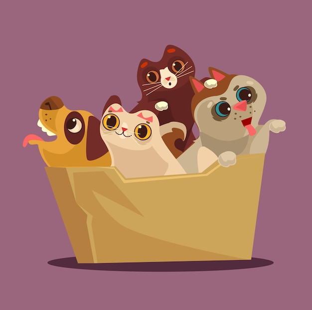 Box with animals. adoption concept.
