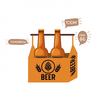 Box with beer bottles isolated icon