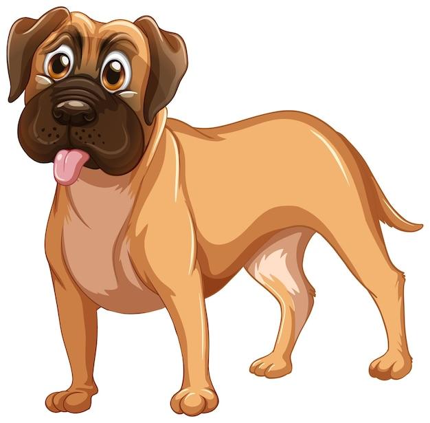 Boxer dog cartoon on white background