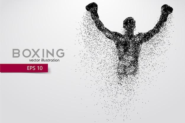 ボクシング、ボクサーのシルエット