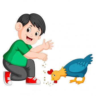 Boy give seed to chicken eat