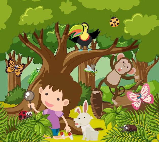 Мальчик смотрит на диких животных в лесу