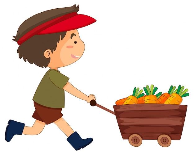Boy pushing wagon full of carrots